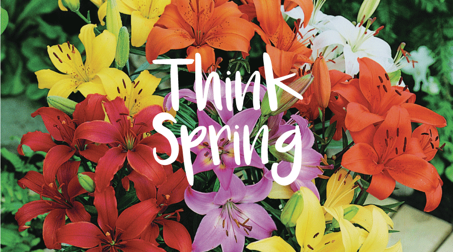 Springing Ahead - Spring School Fundraising Ideas